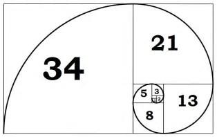 Fibonacci numbers - Photo credit to livescience.com