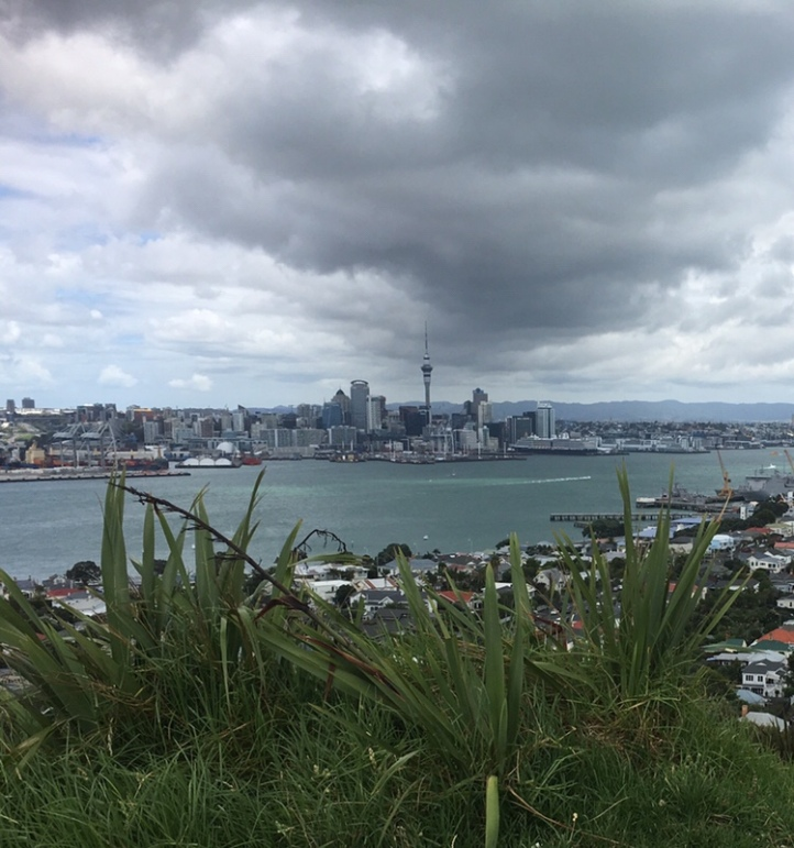 Amazing view from Mt Victoria to Auckland CBD